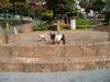2006daifu2_279