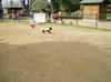 2007daifu4_148