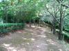 2007daifu5_027