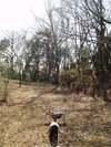 2008daifu1_113