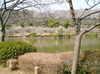 2008daifu1_142