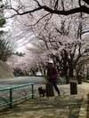 daidai14_106